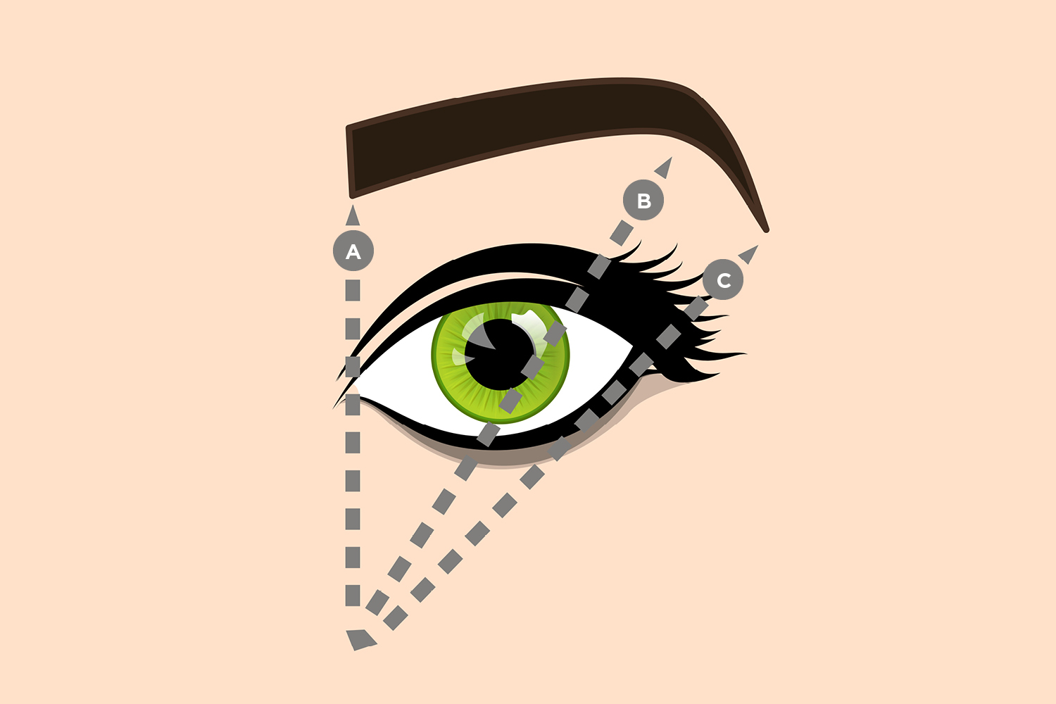 The Classic American Brow